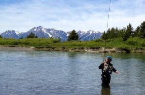 fly fishing 5