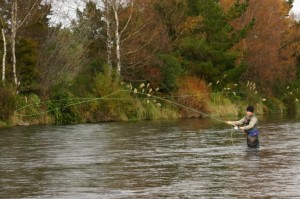 fly fishing 6